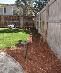 custom landscaping backyard 4