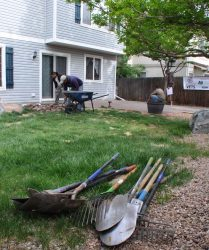 landscaping for vets yard