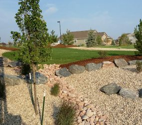 custom landscaping backyard 2